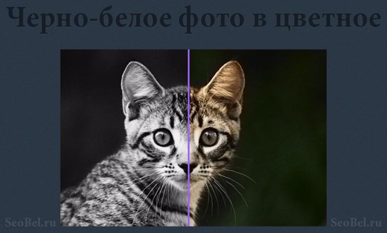 сделать черно белое фото онлайн